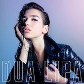 hit download IDGAF Dua Lipa