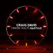 hit download I Know You (feat. Bastille) Craig David