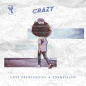 hit download Crazy Lost Frequencies & Zonderling