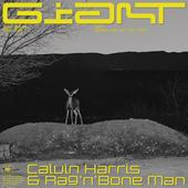 Calvin Harris, Rag'n'Bone Man-Giant