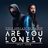 hit download Are You Lonely (feat. ISÁK) Steve Aoki & Alan Walker