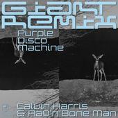 hit download Giant (Purple Disco Machine Extended Remix) Calvin Harris, Rag n Bone Man