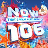 tracklist album Various Artists NOW That s What I Call Music! 106