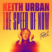 hit download One Too Many Keith Urban & P!nk