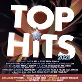 Various Artists-Top Hits 2021