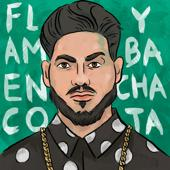 hit download Flamenco y Bachata    Daviles de Novelda