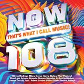 hit download NOW That s What I Call Music! 108    Various Artists
