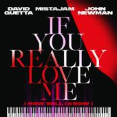 singolo David Guetta, MistaJam & John Newman If You Really Love Me (How Will I Know)