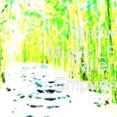 tracklist album Snow Music LF Fallen Empires