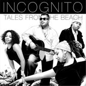 hit download Tales from the Beach Incognito