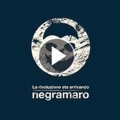 tracklist album Negramaro La rivoluzione sta arrivando